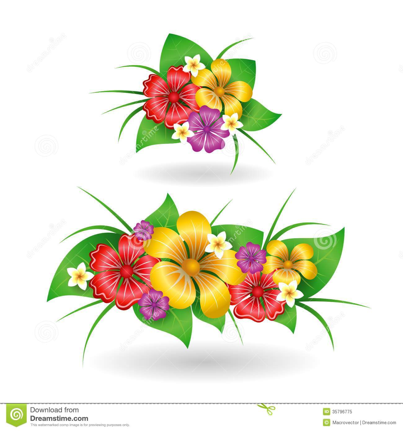 Tropical Flowers Decor Elements Royalty Free Stock Photo.