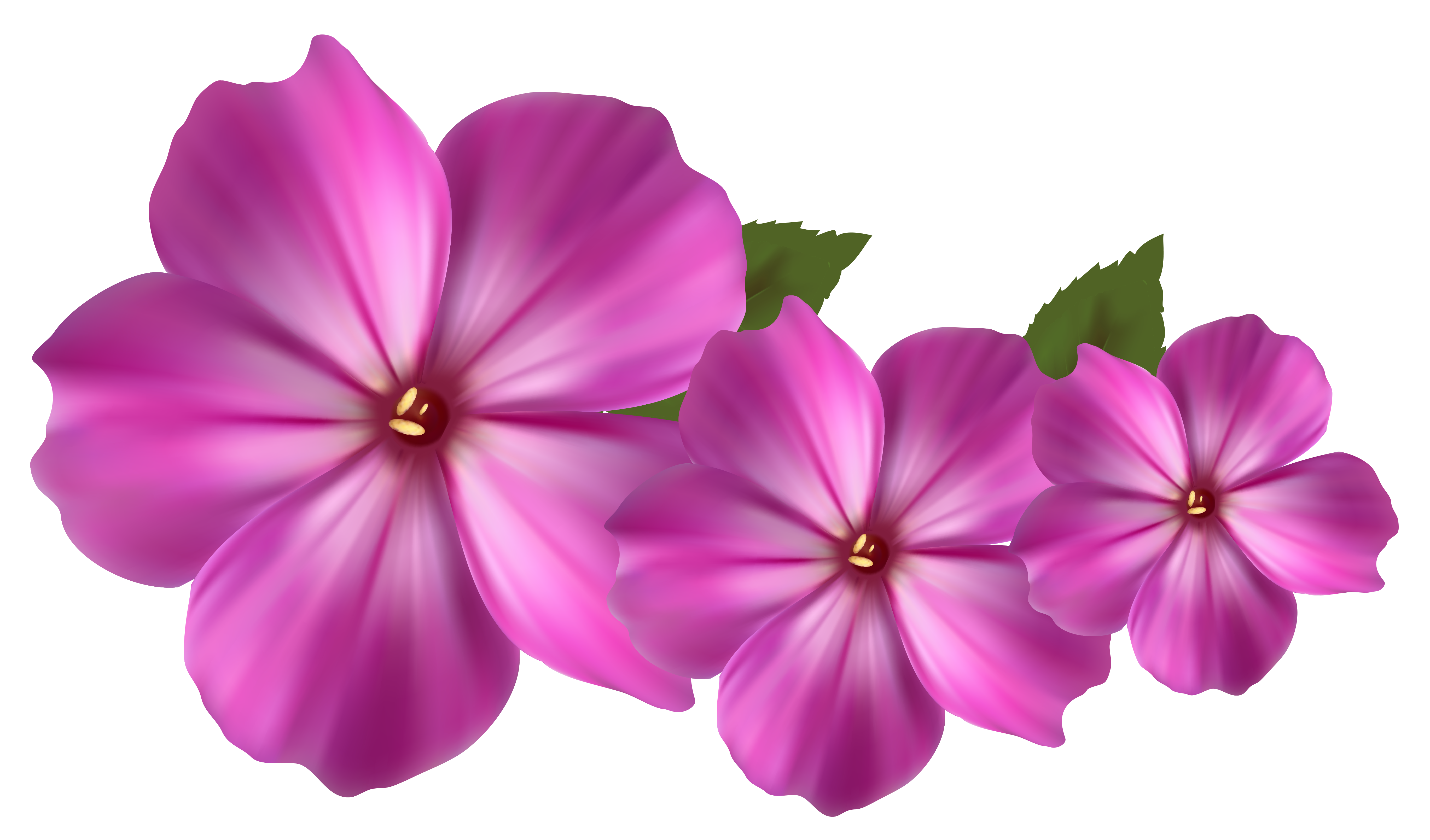 Flowers decor clipart #13