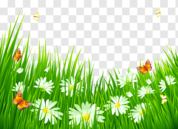 Flying flowers cutout PNG & clipart images.