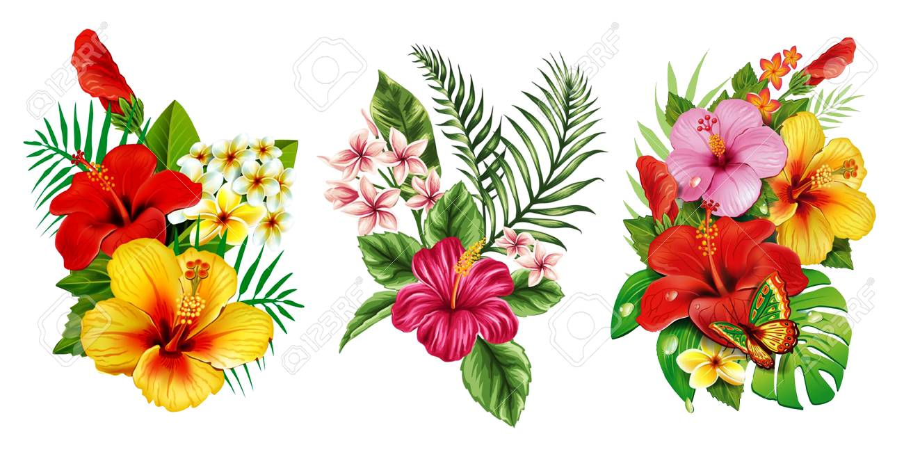 3 in 1, Best HD PNG VINTAGE FLOWER image in one pack.