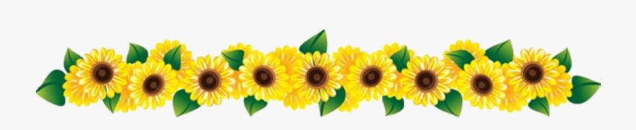 Sunflowers Row Transparent.