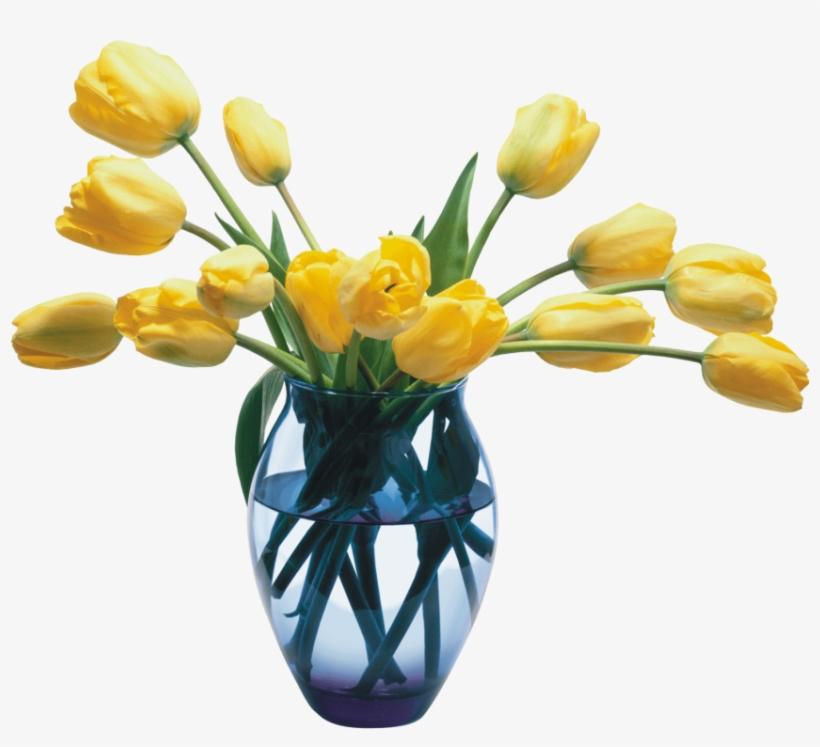 Free Png Download Vase Png Images Background Png Images.