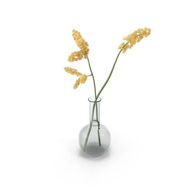 Yellow Flowers in Vase PNG Images & PSDs for Download.