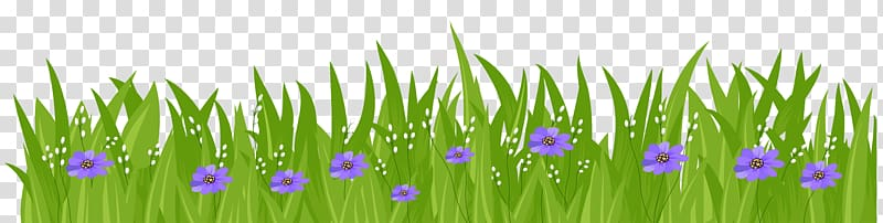 Green grass and purple flowers illustration, Flower Grasses.