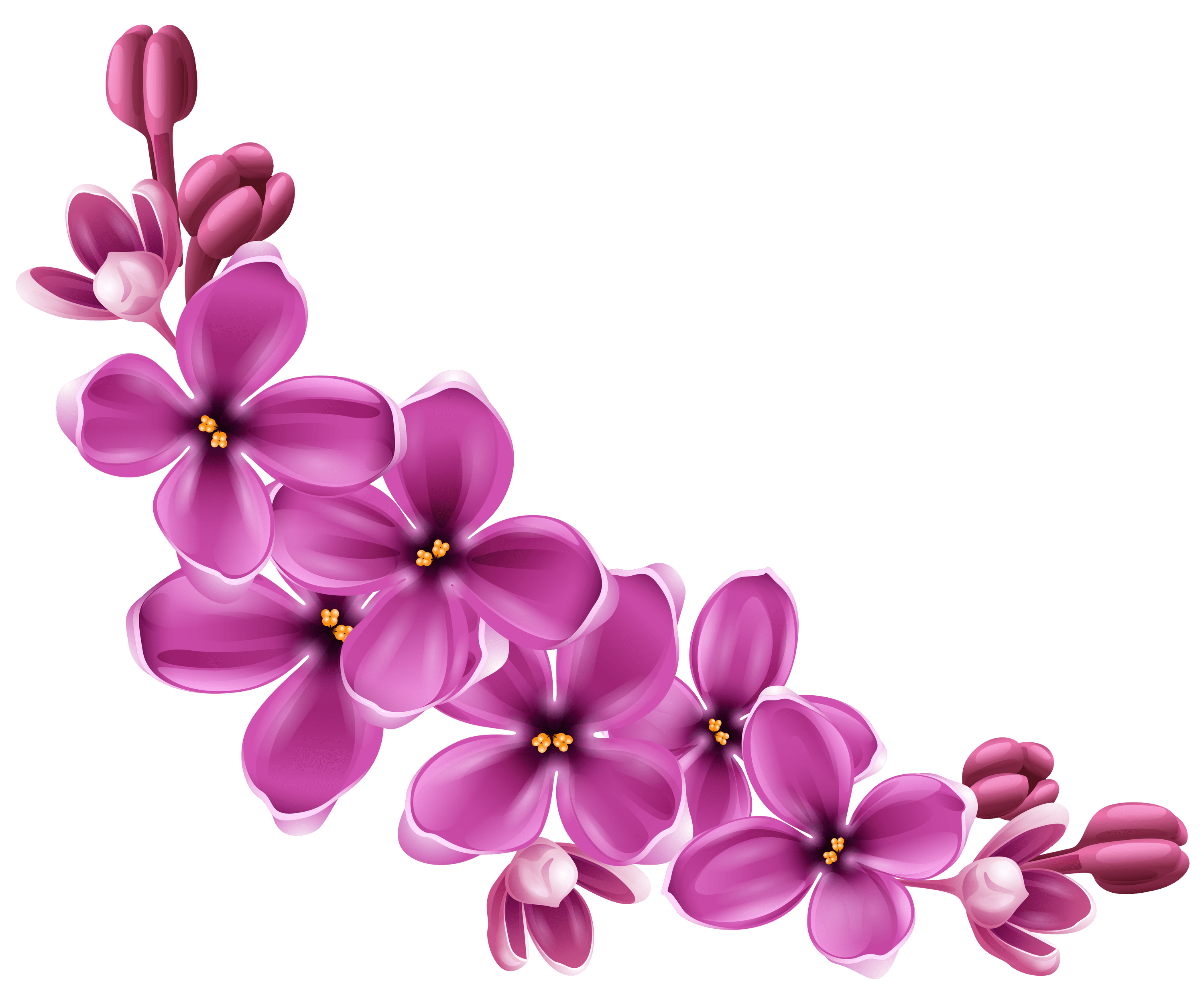 Flowers Purple Curve transparent PNG.