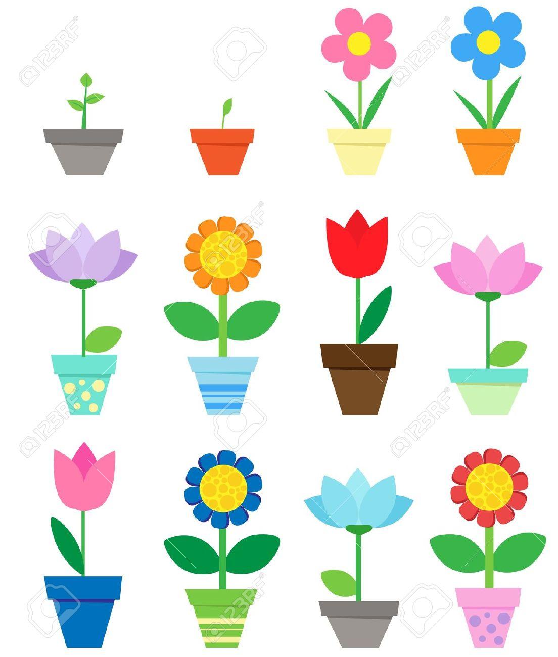 Flowers In Pots.