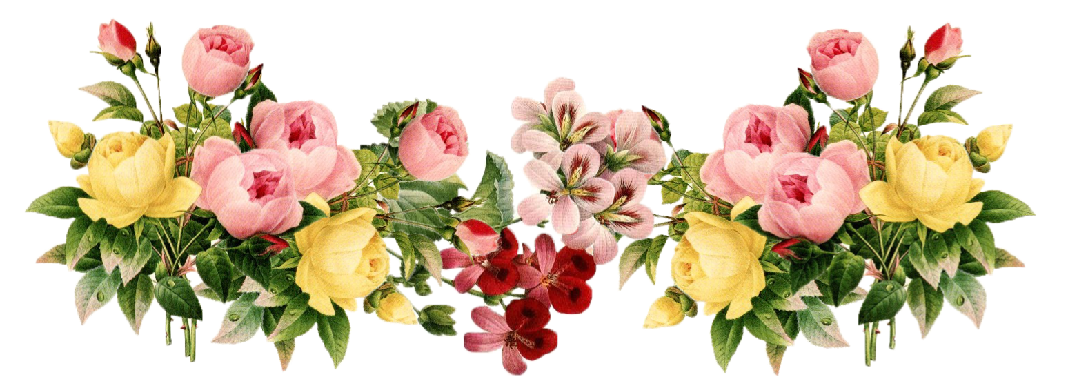 Download Floral PNG Transparent Picture.
