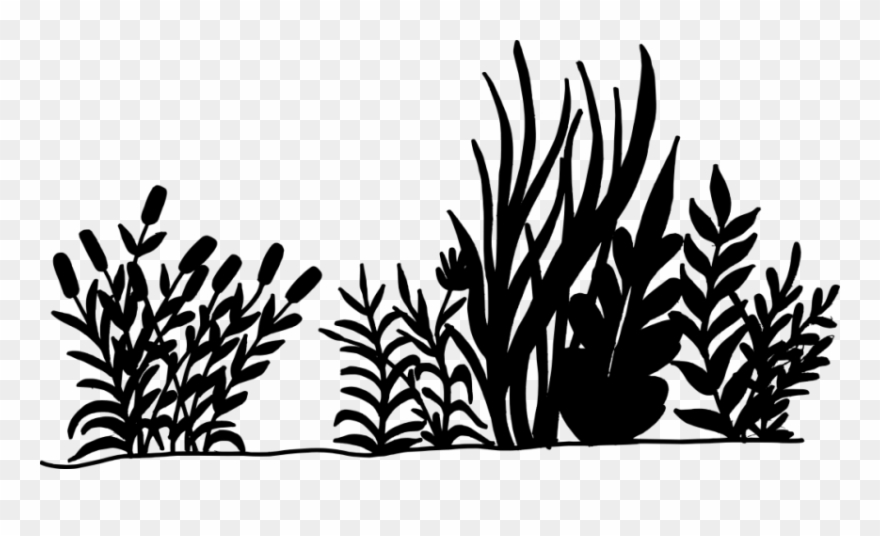 Nature Background Silhouette Png.