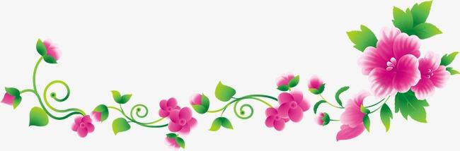 Flower Vine Clipart Png.