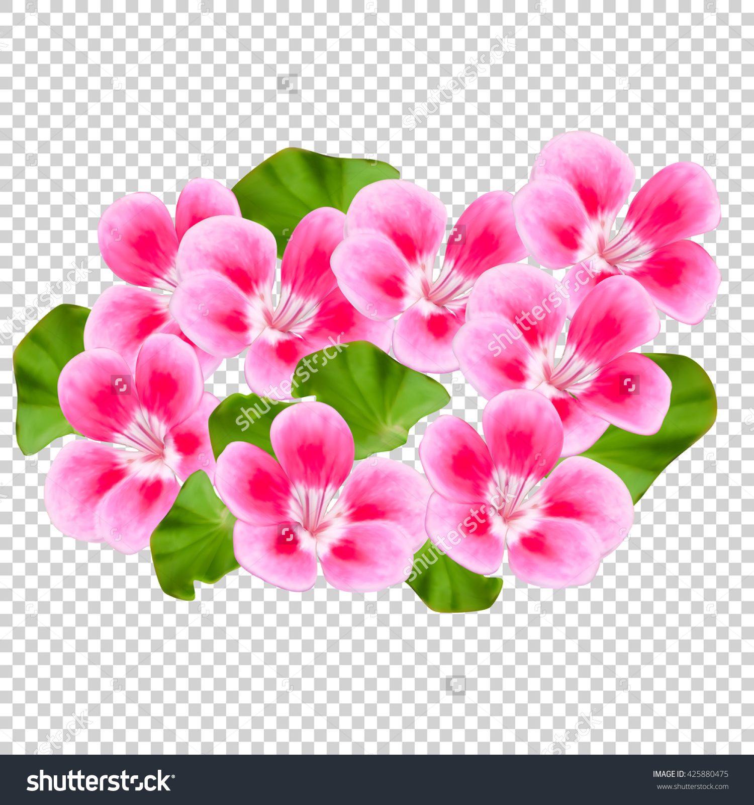 Flowers Without Background Clipground