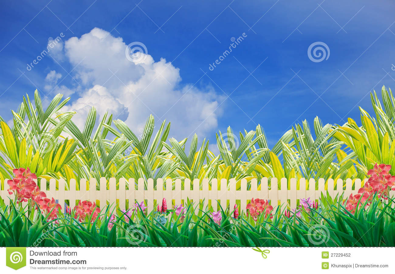Wood Fence And Flower In Home Garden Wiht Blue Sky Stock.