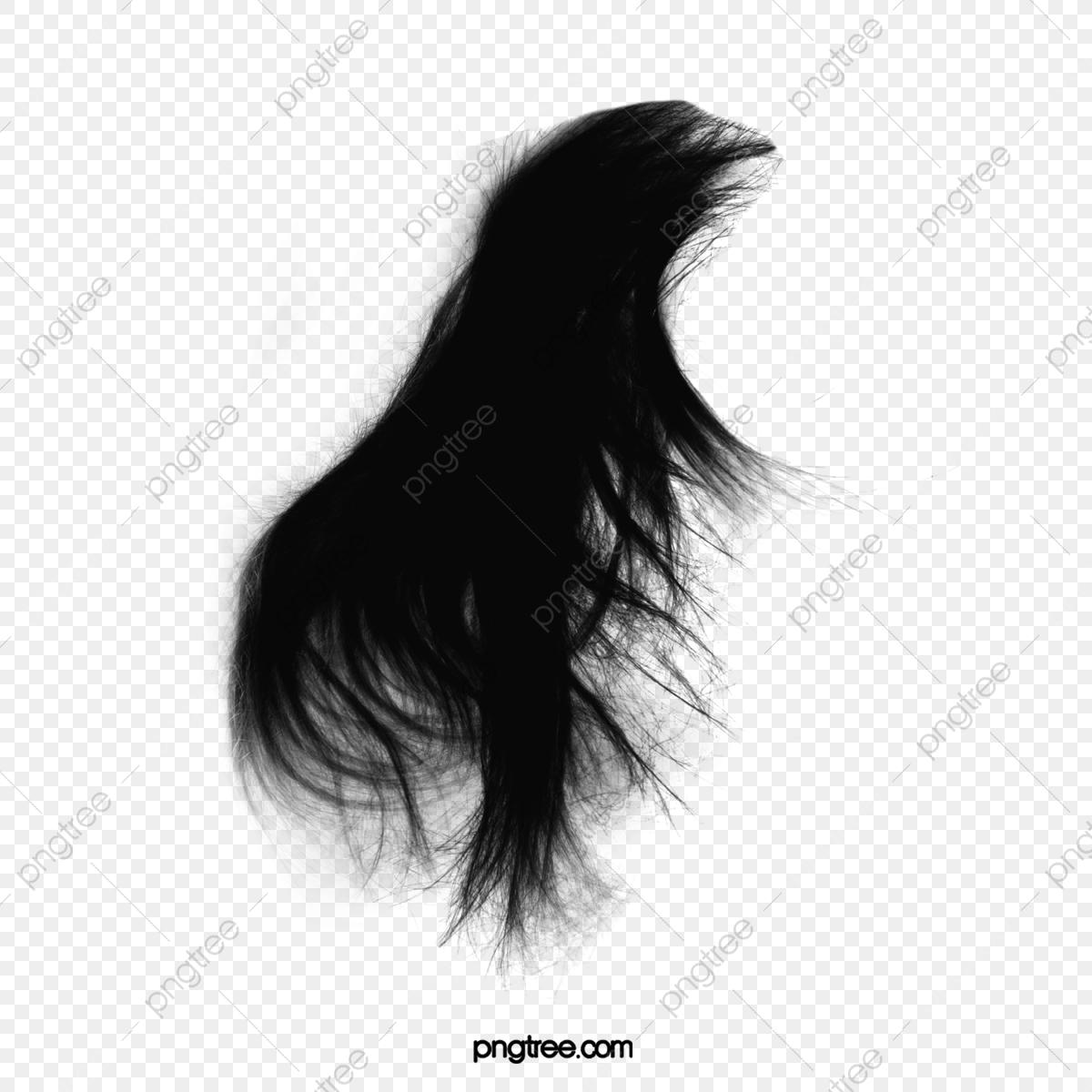 Elegant Scattering Hair, Elegant, Flowing Hair, Long Hair PNG.