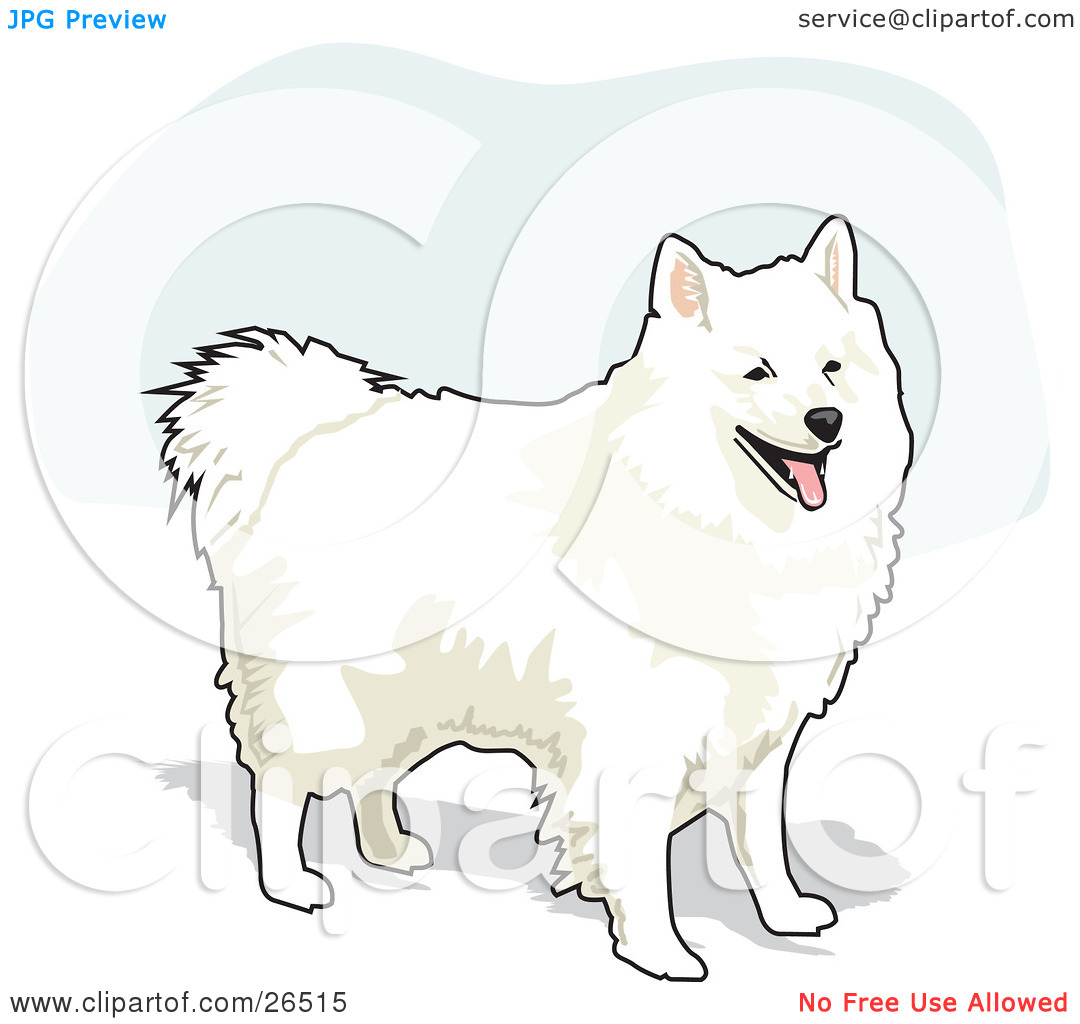 Clipart Illustration of a Fluffy And Friendly White American.