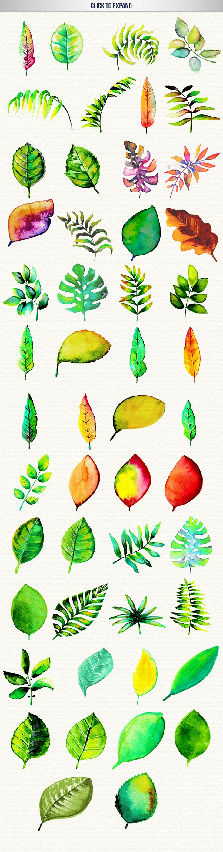 1000+ images about Art with leaves on Pinterest.