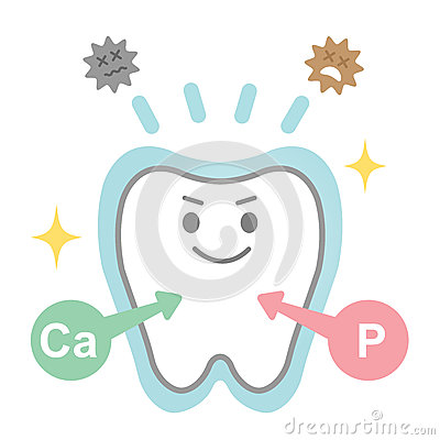 Effects Of Fluoride On Teeth Stock Vector.