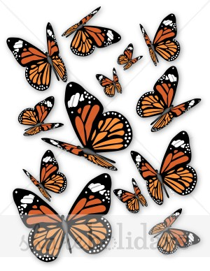 Monarch Butterflies Clipart.