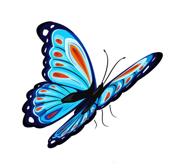 Blue and Red Butterfly PNG Clipart Picture.