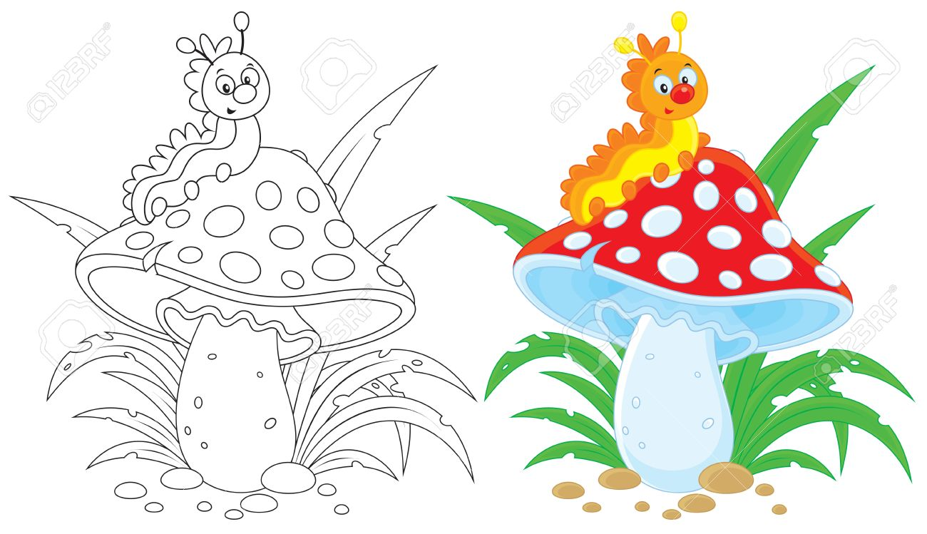 Caterpillar And Fly Agaric Royalty Free Cliparts, Vectors, And.