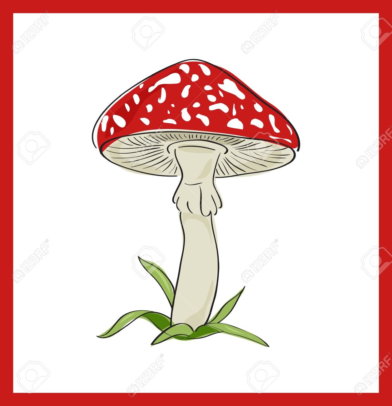 Fly Agaric Death Cup , Vector Illustration Royalty Free Cliparts.