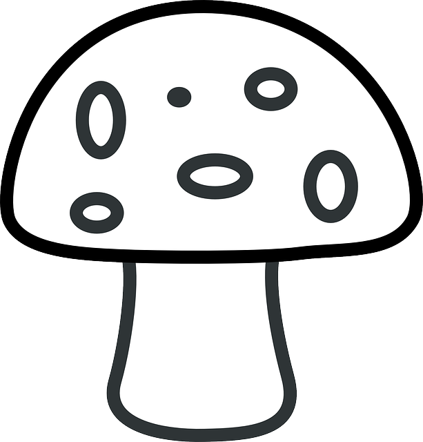 Free vector graphic: Mushroom, Fly Agaric, Fly Amanita.