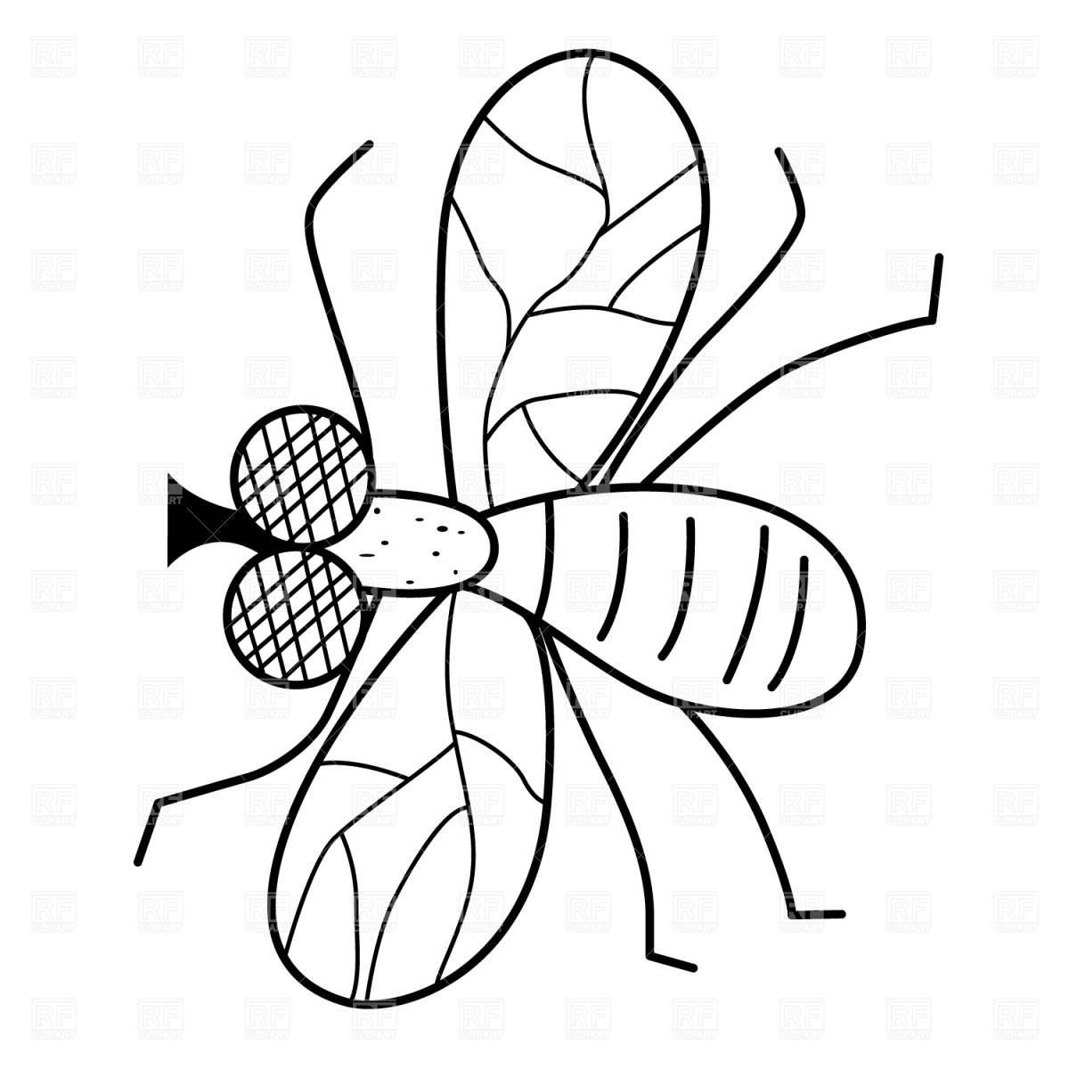 Fly clipart black and white » Clipart Station.