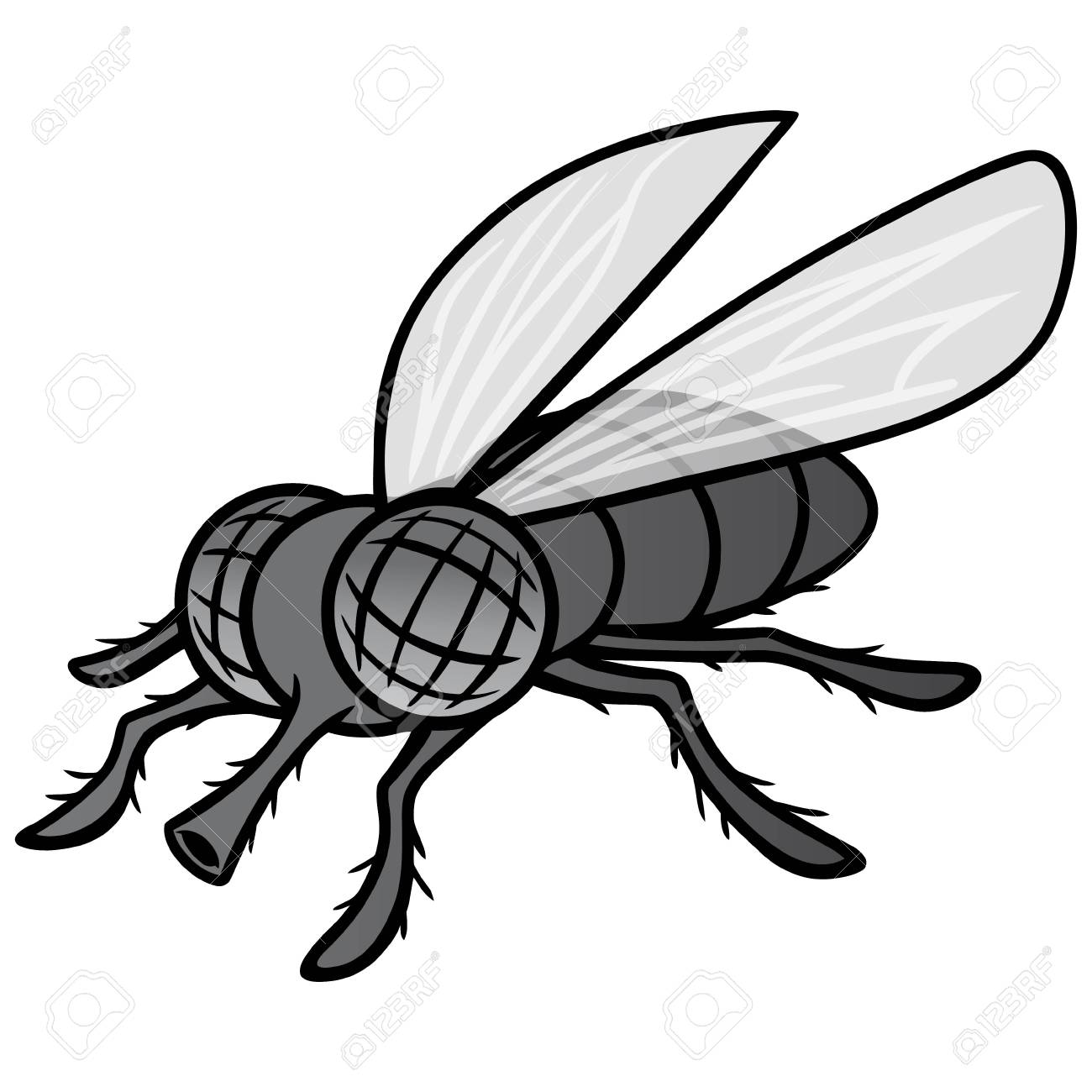 Black and White Fly Mascot.