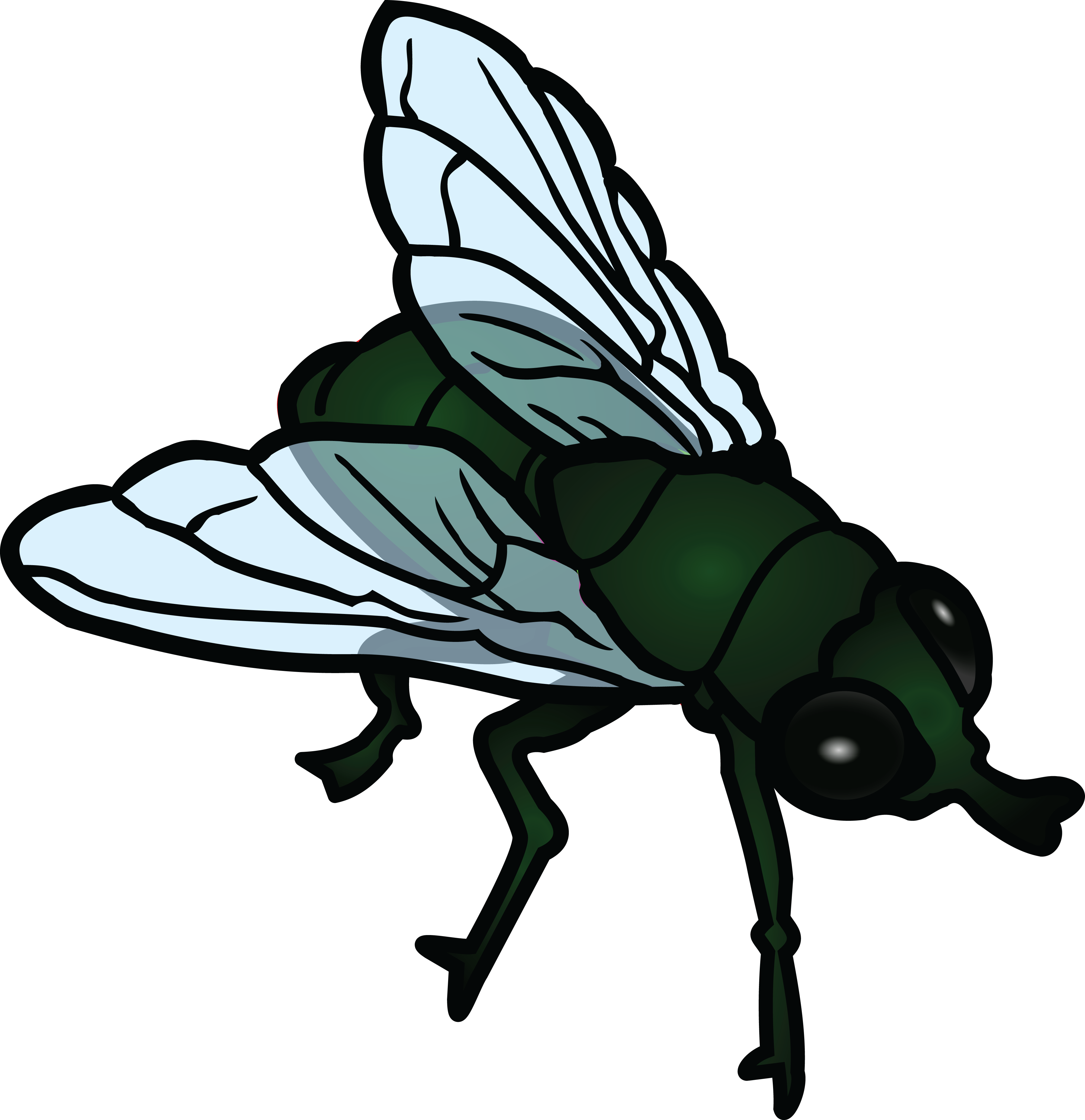 Fly Clipart.