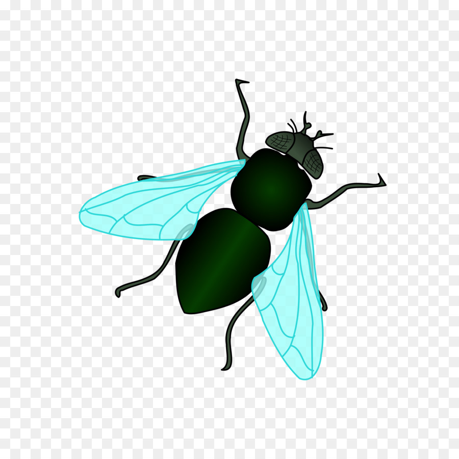 Leaf Fly clipart.