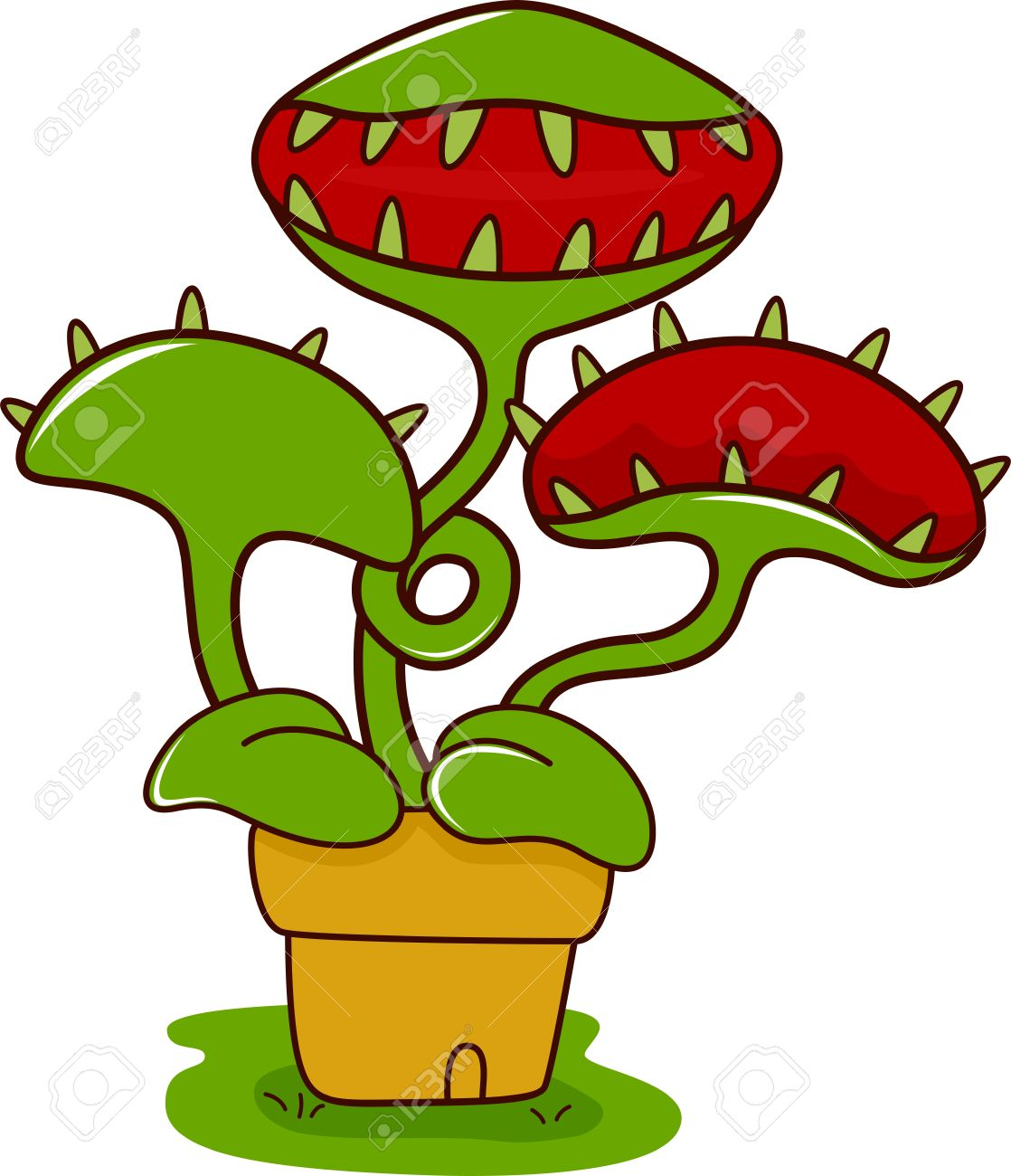 Illustration Of A Venus Flytrap With Its Mouth Wide Open Stock.