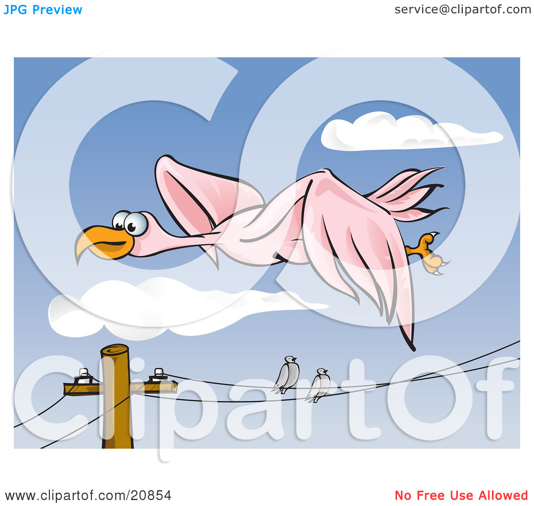 Clipart Illustration of Two Pigeons Perched On A Telephone Wire.