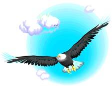 Bird flying in the sky clipart.