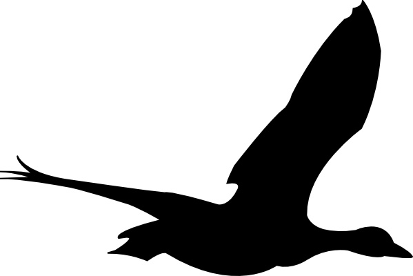 Flying Bird clip art Free vector in Open office drawing svg ( .svg.