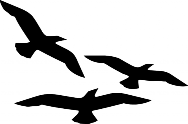 Flying birds clip art.