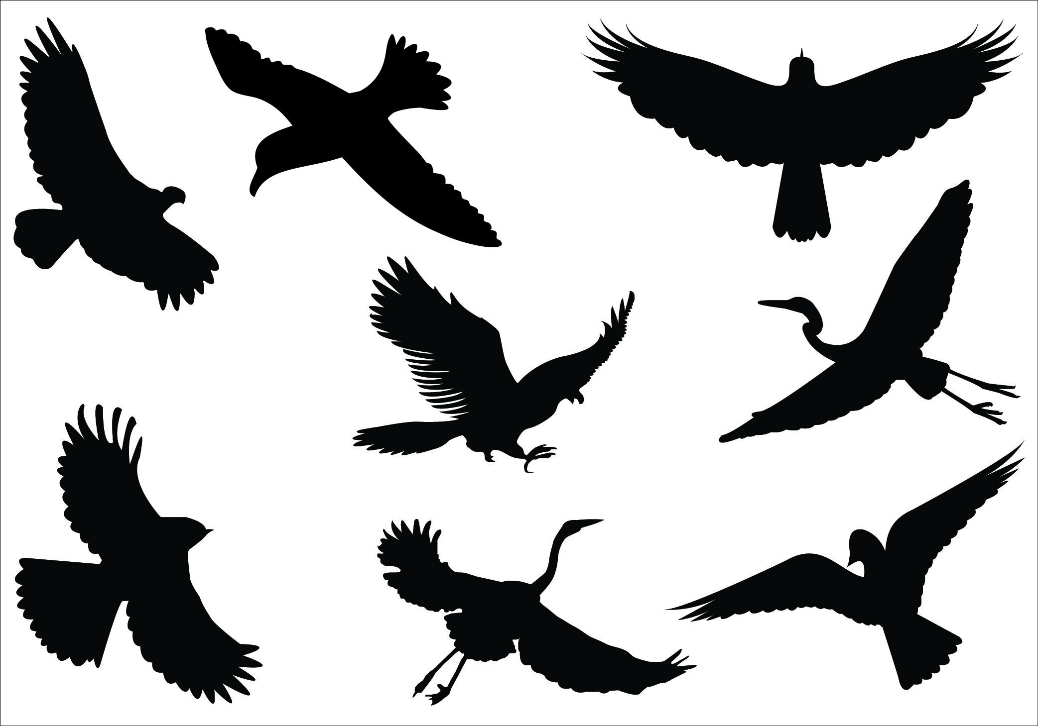 Birds Vector Graphics Archives.