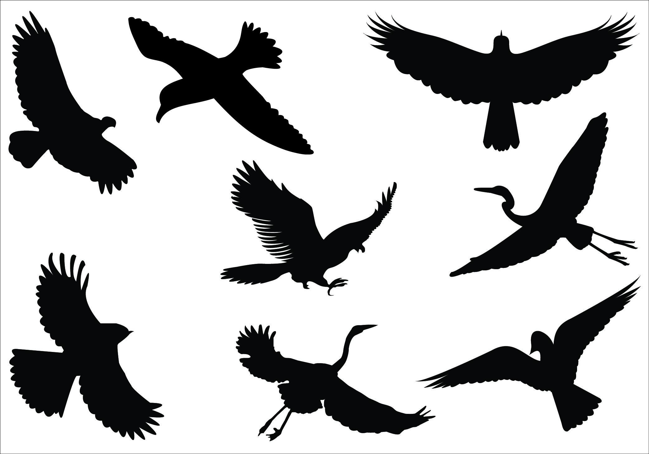 Bird Silhouette Flying Bird Silhouette Flying Bird.