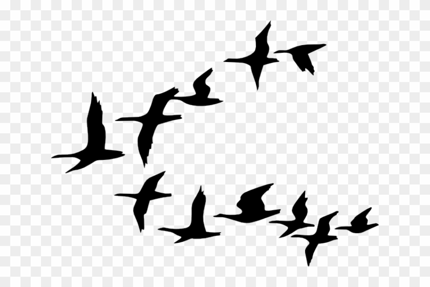 Flying Birds Clipart, HD Png Download.