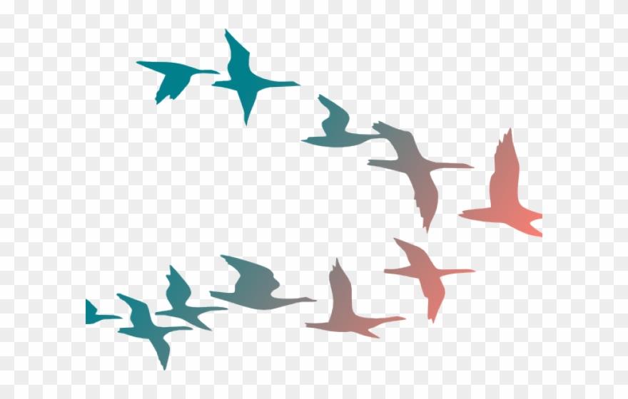 Flying Birds Clipart.