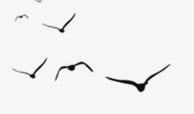 Simple Bird Vector at GetDrawings.com.
