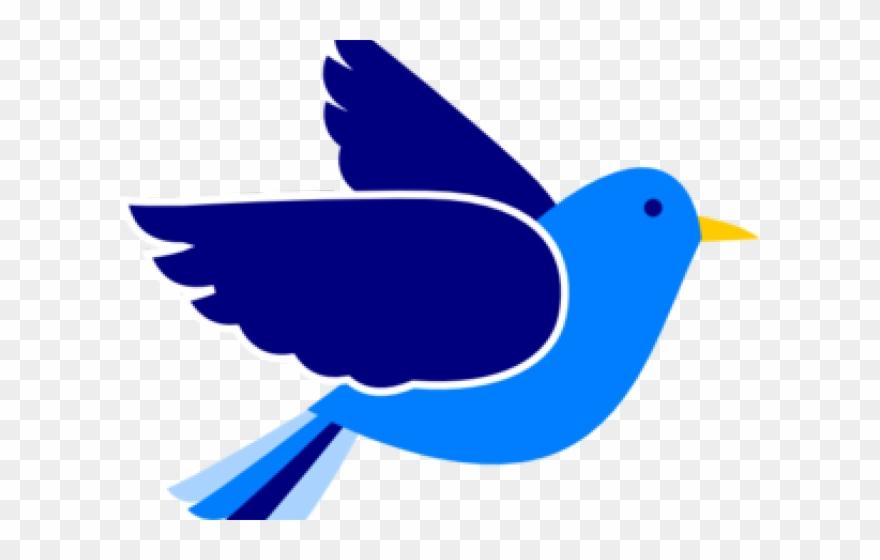 Bluebird Clipart Birdss.