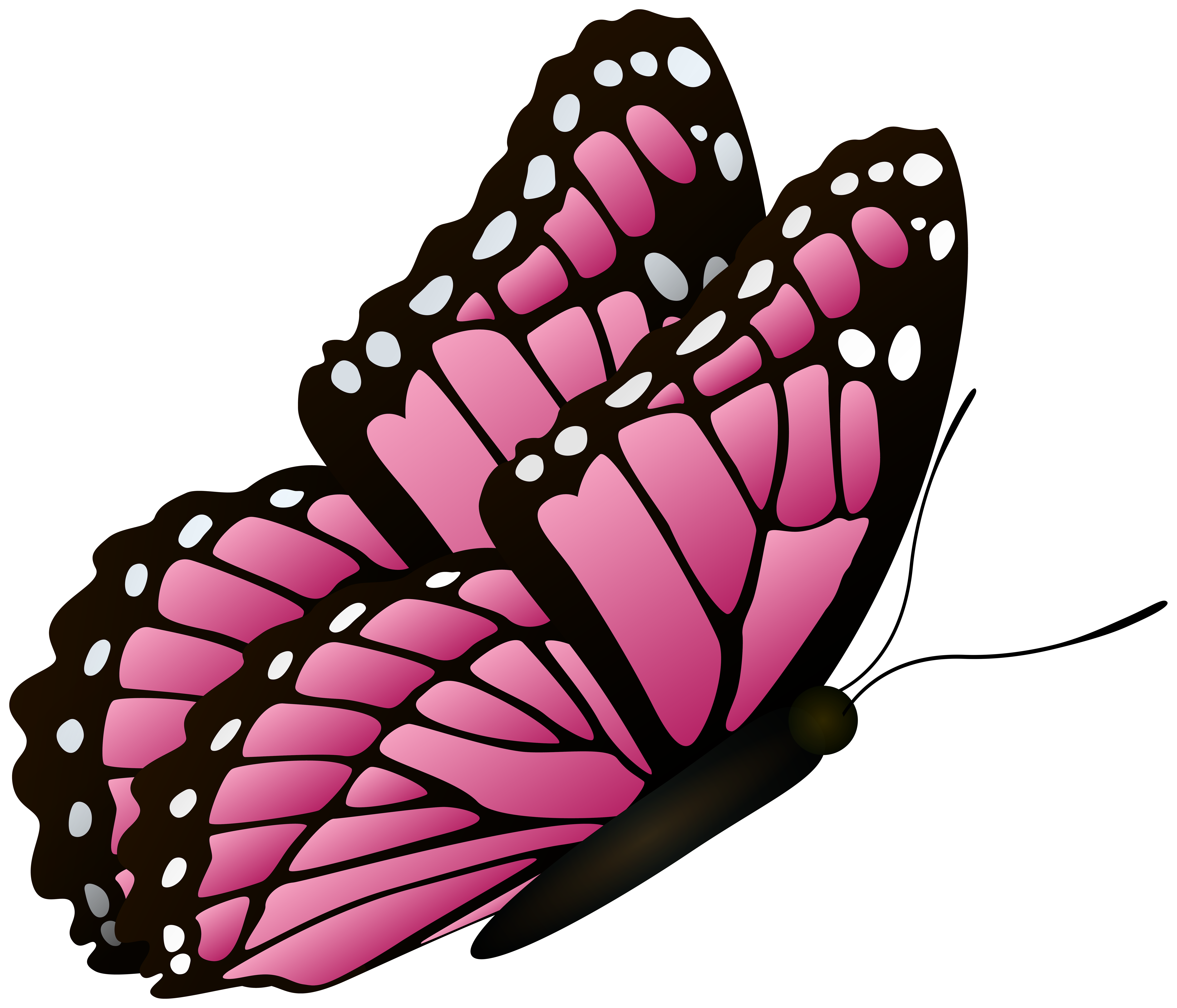 Flying Butterfly Pink Clipart Image.