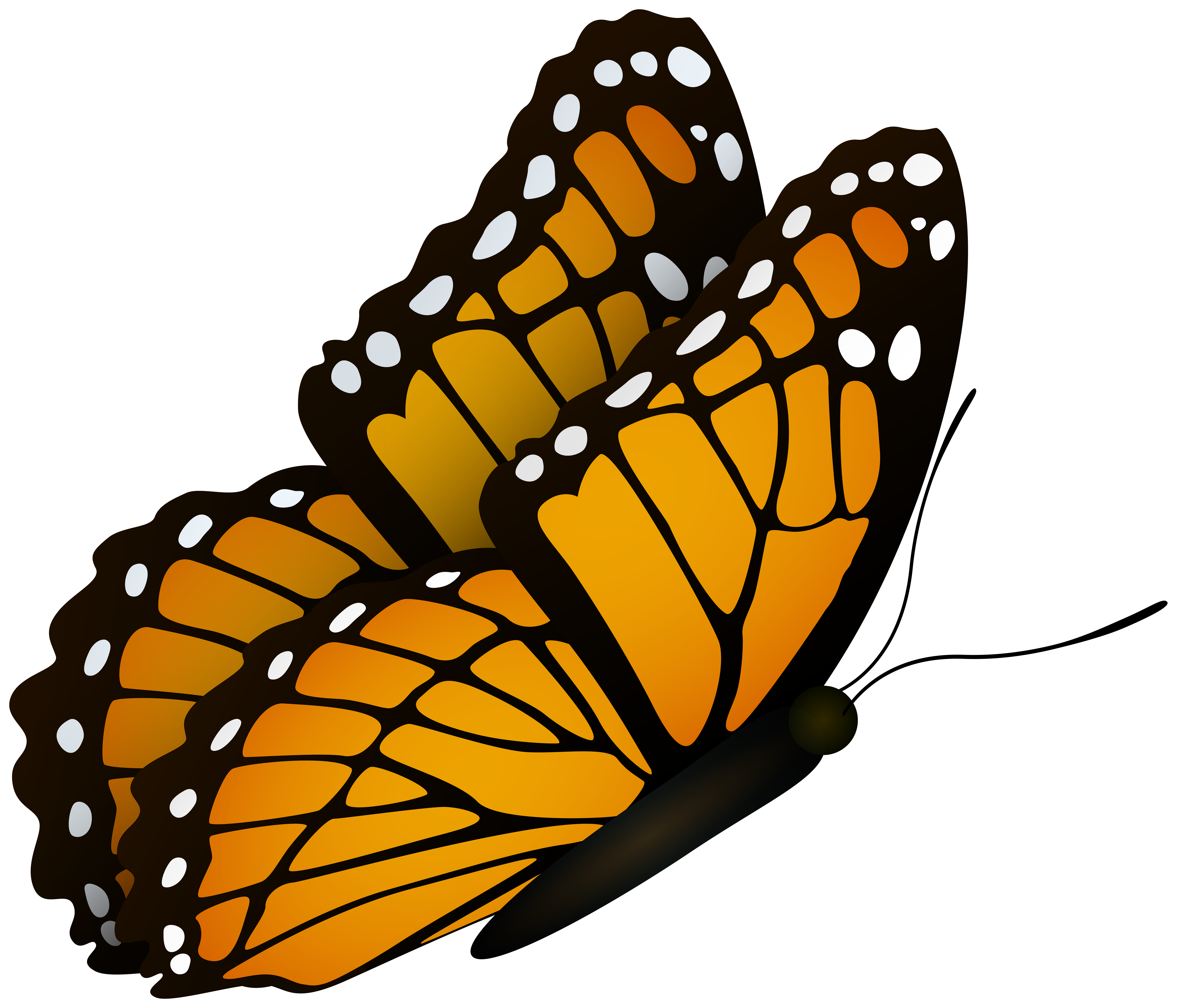 Flying Butterfly Clipart Image.