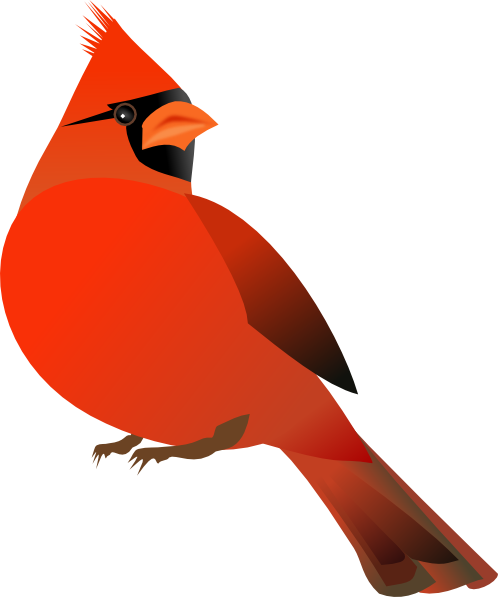 Flying cardinal clipart clipart images gallery for free download.