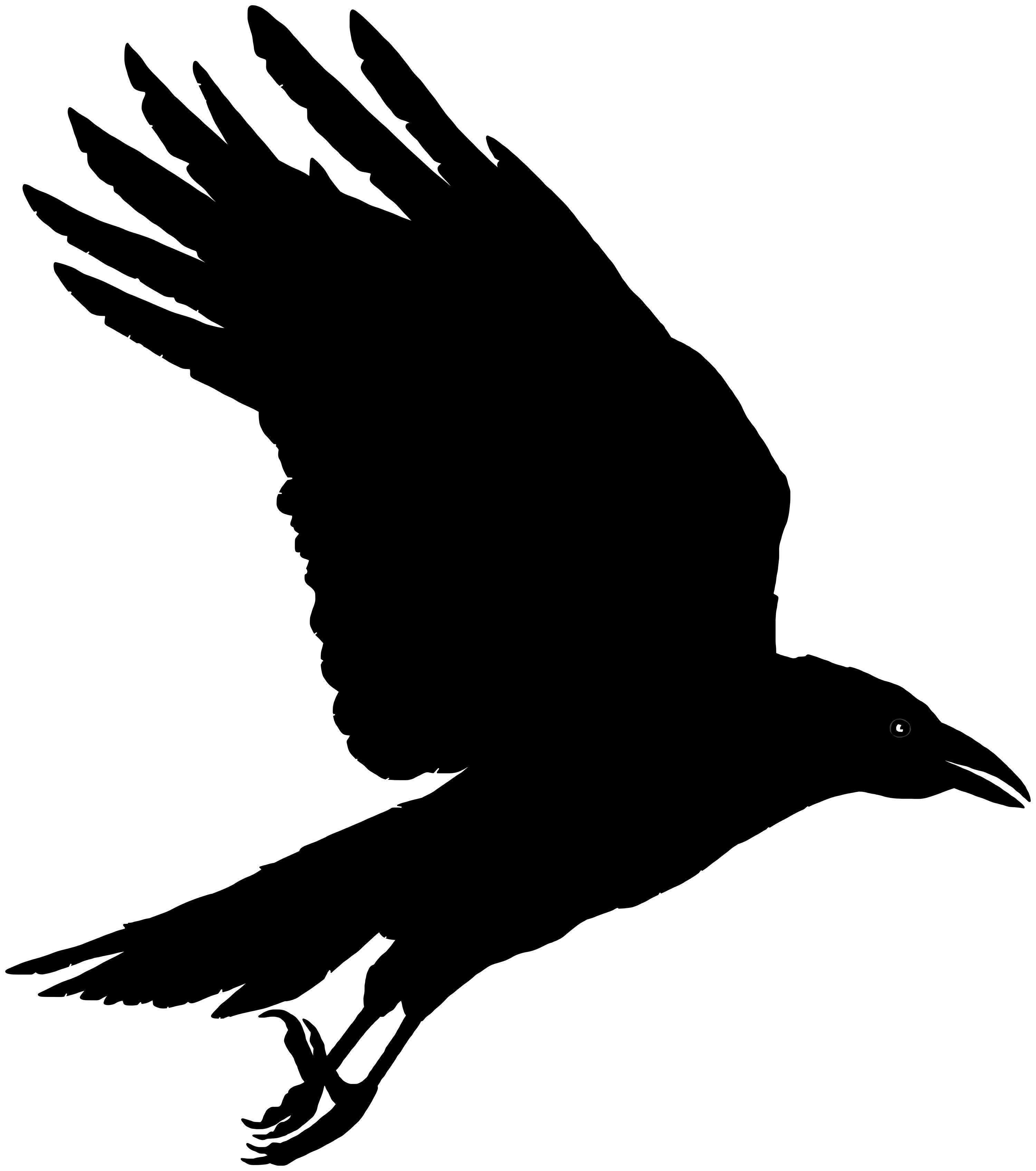 Flying crow clipart 4 » Clipart Portal.
