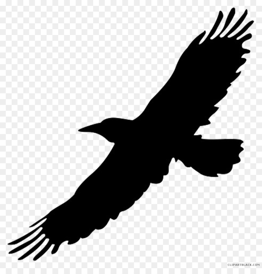 Free Flying Crow Silhouette, Download Free Clip Art, Free Clip Art.