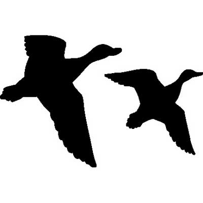 Flying Duck Silhouette.