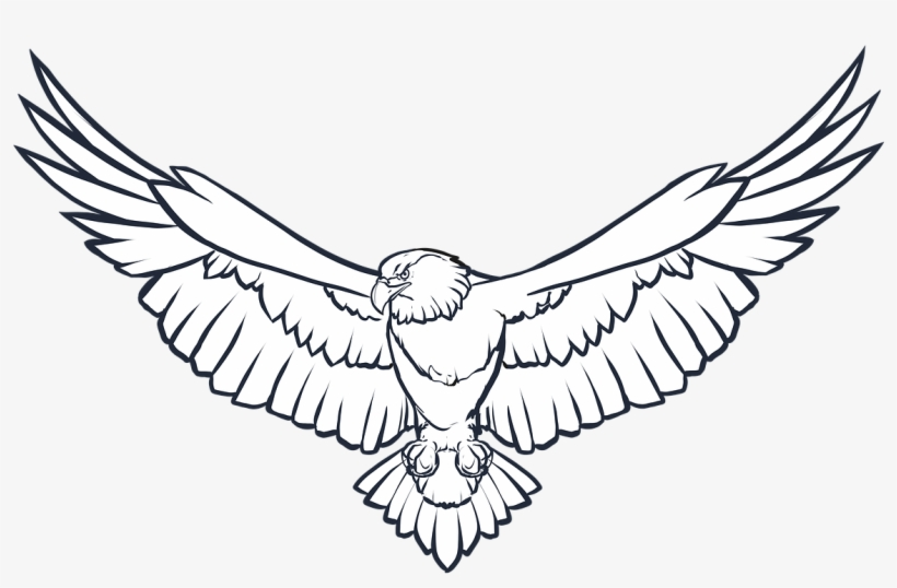 Eagle Wings Png Photo.