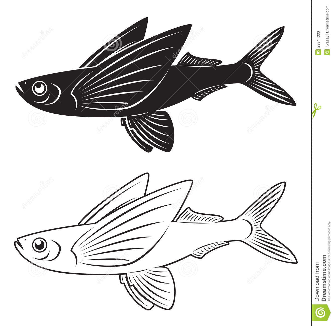 Flying fish clipart.