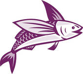 Flying Fish Clip Art.