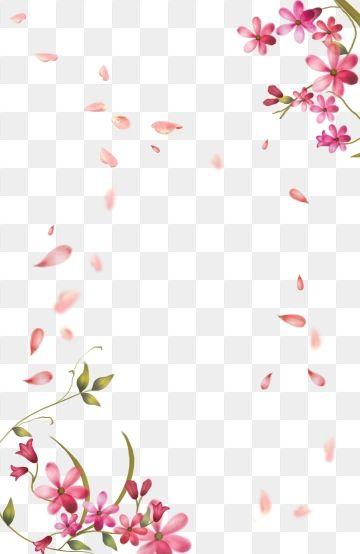 2019 的 Spring Petal Flowers Step On, Petals Flying.