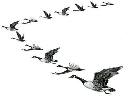 Free clip art geese in formation.